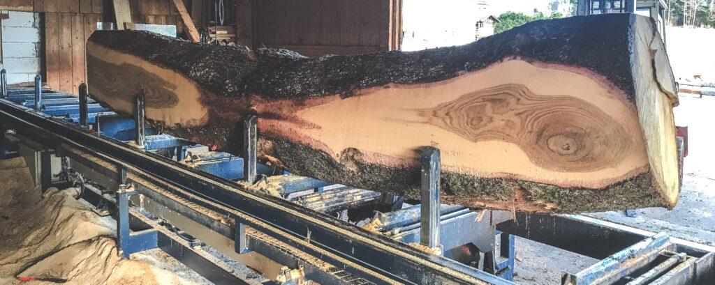 Saegewerk Eichenbohlen Produktion